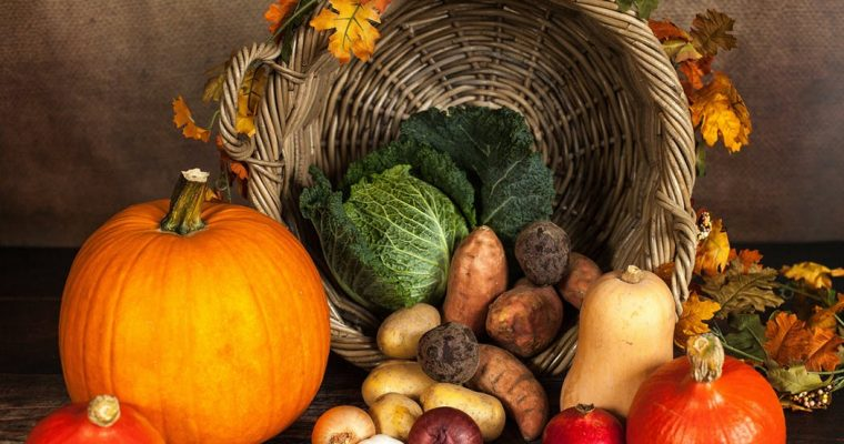 筋トレダイエット「魚/野菜/豆/穀物」はどれくらい食べていい?